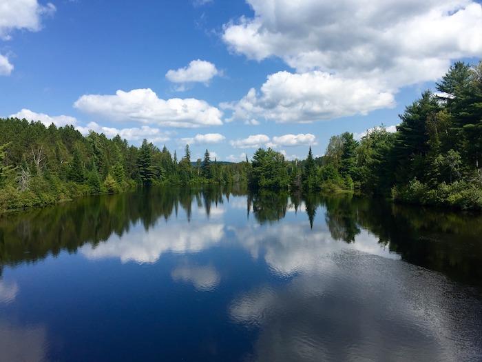 Alberi che si specchiano nell'acqua, tradizione canadese del parquet
